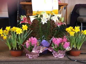 Easter flowers 2018 2